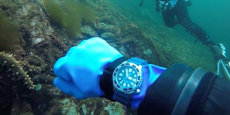 Citizen Promaster Diver BN0151-09L Diving